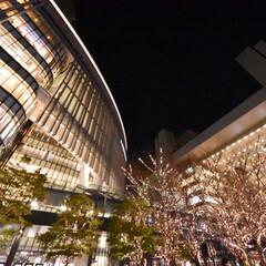 街撮り/夜景/大阪/冬/LIMIAおでかけ部/フォロー大歓迎/...