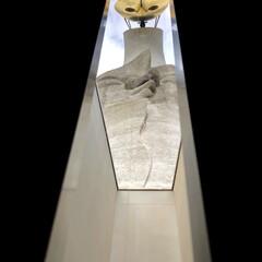 デート/太陽の塔/大阪/LIMIAおでかけ部/フォロー大歓迎/おでかけ/... 以前から予約していた、太陽の塔の内部見学…