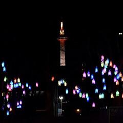 イルミネーション/京都タワー/京都冬の光宴2019/デート/京都/LIMIAおでかけ部/... 水族館の帰りに📸