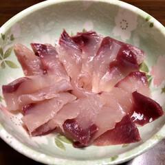 刺身/ハマチ/はまち/食事情/フォロー大歓迎 昨年から釣りにハマりだした旦那さん🐟 お…