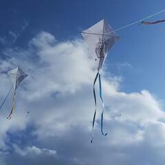 あけおめ/初投稿/凧上げ 今年も良い風吹きますように!