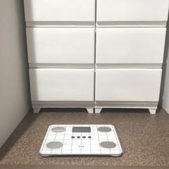 体重計/洗面所/脱衣場/ニトリ/暮らし 洗面所の収納にはいつでも測れるように、体…(1枚目)