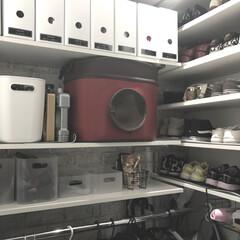 ダイソー/やわらかポリエチレンケース/ファイルボックス収納/玄関収納/シューズクローゼット/可動棚/... 我が家の小さなシューズクローゼット。 棚…