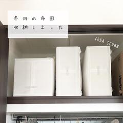 SKUBB(スクッブ) ボックス 3ピースセット ホワイト 31×34×33 cm | イケア(小物収納、小物入れ)を使ったクチコミ「やっと放置していた冬布団収納しました。 …」