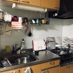 賃貸暮らし 映えないキッチン