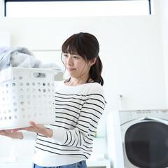 雑貨/生活雑貨/文房具/洗濯/バスルーム雑貨/洗濯ネット/...