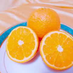 柑橘類/みかん/フォロー大歓迎/フード/スイーツ 鹿児島の実家から『たんかん』が届きました…