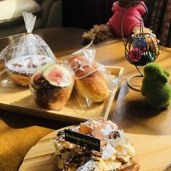 トイプードル/仙台パン屋/キリンのパン屋/お気に入りの店/パン好き お気に入りの🦒パン屋 出かけた先に丁度あ…
