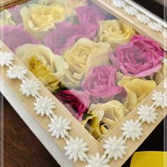 花束/シリカゲルドライ/セリア 退職する時に頂いた花束をドライフラワーに…
