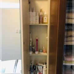 ミューズノータッチ泡ハンドソープ本体キッチン 250ml   ジョンソン(ハンドケア)を使ったクチコミ「うちの洗面所🌿🌿🌿 必要最小限なものしか…」(3枚目)