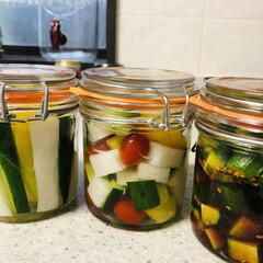 朝採り野菜/きゅうりのしょうゆ漬け/ピクルス 暑いですね💦 涼しいうちに野菜を収穫して…