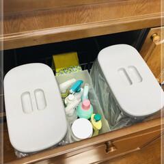 キッチン/収納/ゴミ箱 キッチンのゴミ箱🗑  意外と置く場所に困…