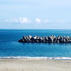 海/トイプードル/お散歩日和/秋晴れ/風が気持ちいい 実家の帰りに海へ寄り道散歩🐾 天気も良く…