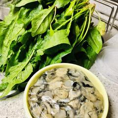 美味しいもの好き/牡蠣づくし/食欲の秋 今晩は牡蠣づくし🦪 朝市好きな旦那が日曜…(4枚目)