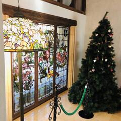 クリスマスツリー集めてみた/那須旅行/クリスマス/クリスマスツリー クリスマスツリー🎄🎅🎁🎄  那須ステンド…(1枚目)