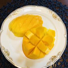 至福のひととき/この時期の楽しみ/果物/嬉しいプレゼント/毎年恒例/マンゴー/... 立派なマンゴー届きました❣️ 沖縄の親戚…(2枚目)
