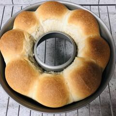 cotta/パン好き/焼き立てパン/ちぎりパン ちぎりパンが焼けました~🍞 昨晩仕込んで…