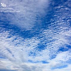 自然観察/初秋の空/おでかけ/LIMIAおでかけ部/おでかけワンショット 初秋の空  秋らしい雲ですねー(*¨̮*)