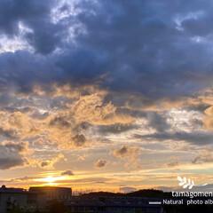 自然観察日記/夕暮れ時/雨明けの空 雨明けの空・夕暮れ時  昨日は午前から午…