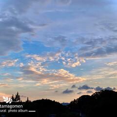 夕暮れ空/自然観察日記 夕暮れ空  18時54分に撮影したpic…