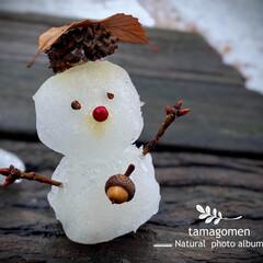 雪だるま 雪だるま  3cm位でしょうか… 近畿地…