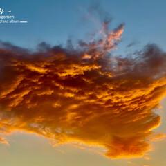 冬の日の出空/自然観察日記 冬の日の出空  日の出数分間だけ見られた…