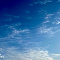 自然観察日記/春めいた空 春めいた空  春らしい空でした 朝から晩…