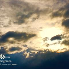 自然美/自然観察/夕陽/夕陽が沈む 夕陽が沈む  迫力のある夕陽です。