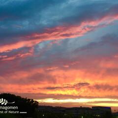 雨の日/夕暮れ空/おでかけ/LIMIAおでかけ部/おでかけワンショット 萌える夕暮れ空  18時31分の夕暮れ空…
