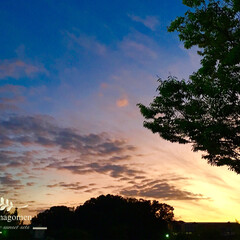 夕焼け空/おでかけ/LIMIAおでかけ部 夕焼け空  最近、朝夜が涼しく過ごしやす…