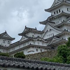 姫路城/お出かけワンショット/おでかけワンショット お城好きの相方について 姫路城に行きまし…(3枚目)