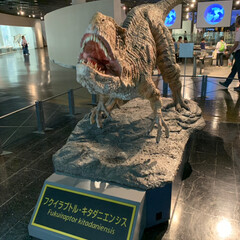 恐竜博物館/おでかけ 相方、孫と一緒に 福井県にある恐竜博物館…(1枚目)