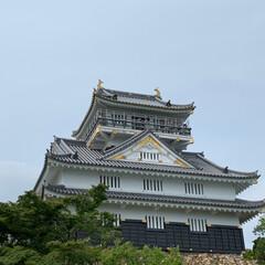 岐阜城/おでかけワンショット お城好きの相方について行って 岐阜城へ行…