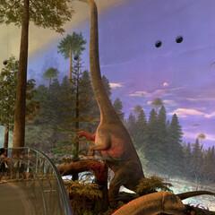 恐竜博物館/おでかけ 相方、孫と一緒に 福井県にある恐竜博物館…(5枚目)