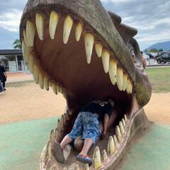 恐竜博物館/おでかけ 相方、孫と一緒に 福井県にある恐竜博物館…(7枚目)