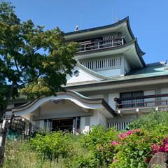 お城/おでかけワンショット 1枚目愛知県の犬山城へ 2枚目その後小牧…(2枚目)