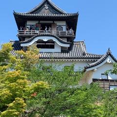お城/おでかけワンショット 1枚目愛知県の犬山城へ 2枚目その後小牧…