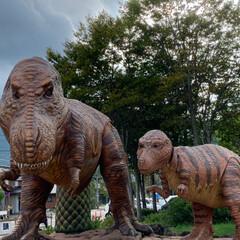 恐竜博物館/おでかけ 相方、孫と一緒に 福井県にある恐竜博物館…(8枚目)