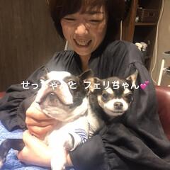 平成最後の/LIMIAペット同好会/フォロー大歓迎/ペット仲間募集/犬