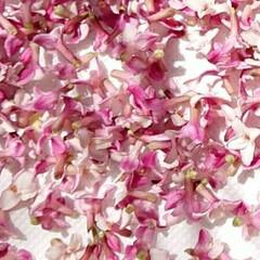いい香り/かわいい/ポプリに/ポプリ作り/ポプリ/生の花/... 沈丁花のモイストポプリを作ってみました😄…