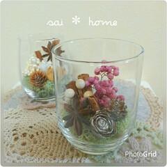 うすグラス/グラスアレンジ/テラリウム/グラス/クリスマス/雑貨/... ダイソーのうすグラスに木の実を閉じ込めて…