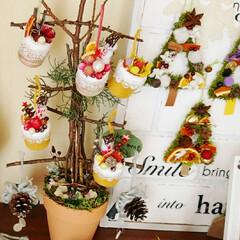 クリスマス/ハンドメイド/枝/ツリー/ケーキオーナメント/オブジェ/... 手作りケーキオーナメントを飾りたくて、リ…