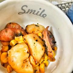 嫁さんの手作り/おはよう/いつもありがとう/ごちそうさまでした/美味しいご飯/朝ごはん大好き/... 今朝の嫁さんが作ってくれた朝ごはん。メイ…(3枚目)