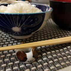 大掃除/Breakfast/朝ごはん/ごちそうさま/いつもありがとう/箸置き/... 今朝の嫁さんが作ってくれた朝ごはん。 豚…(5枚目)