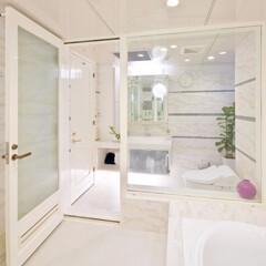 洗面室/トイレ/トイレルーム/白い壁/モザイクタイル/ホテルのような/... 洗面室・トイレルームの白い壁に、ブルー系…(1枚目)
