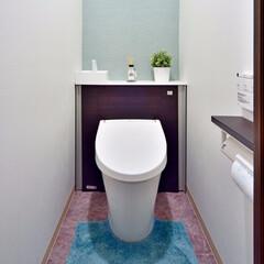 トイレ/トイレマット/小物入れ/収納/スッキリ/色 /... トイレのタンクを隠し、スッキリと。 小物…(1枚目)