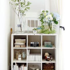 隙間収納/収納/見せる収納/飾り付け/ディスプレイ/収納棚/... 部屋の隙間に収納棚を設けています。  見…