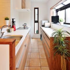 キッチン/カウンター/収納/引き出し収納/料理/明るいキッチン/... 収納を充実させたキッチンにしてみました。…