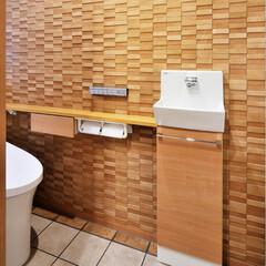 トイレ/壁/調湿性/素材/湿気/湿気対策/... トイレの壁を調湿性のある素材にしました。…
