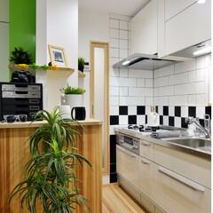 キッチン/収納/収納力/観葉植物/緑/チェッカー/... 白系のキッチンにチェッカーのアクセントを…